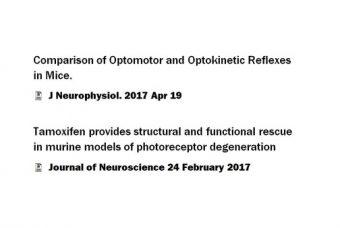 qOMR publications