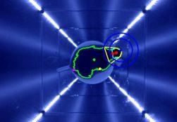 qOMR live mouse showing algorithm