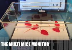 Multi Mice Monitor